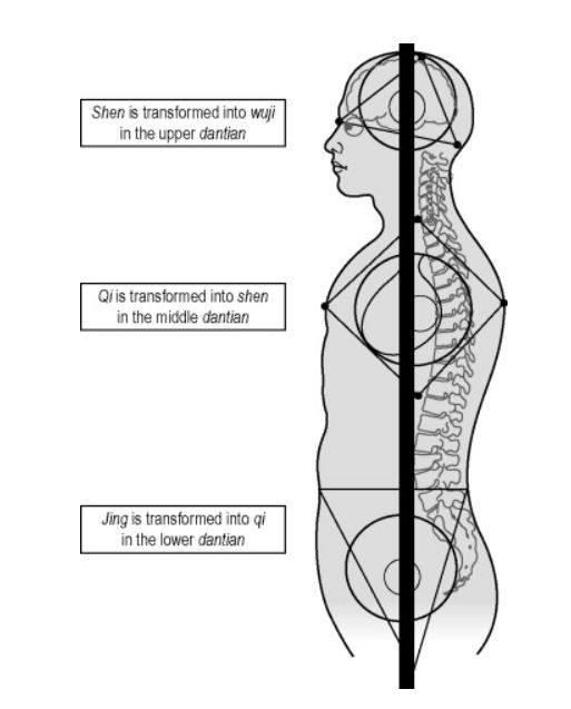 Basic Qigong Protocol